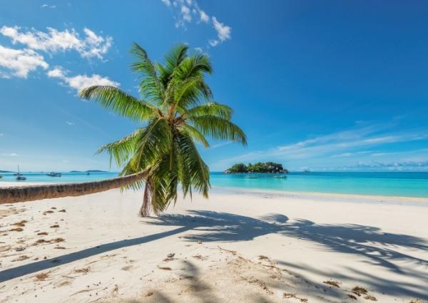 magnifiques plages de cuba